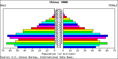 China population pyramid 2000